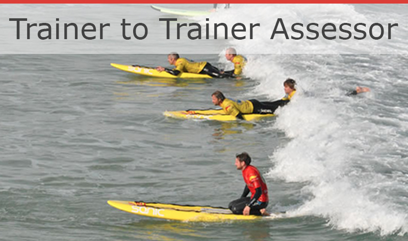 Trainer to Assessor